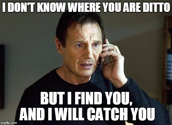I need to breed my pokemon! | I DON'T KNOW WHERE YOU ARE DITTO BUT I FIND YOU, AND I WILL CATCH YOU | image tagged in memes,liam neeson taken 2,funny,pokemon go,pokemon,ditto | made w/ Imgflip meme maker