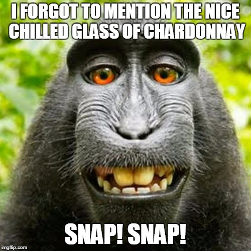 I FORGOT TO MENTION THE NICE CHILLED GLASS OF CHARDONNAY SNAP! SNAP! | made w/ Imgflip meme maker