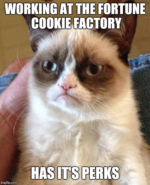 Grumpy Cat Meme | WORKING AT THE FORTUNE COOKIE FACTORY HAS IT'S PERKS | image tagged in memes,grumpy cat | made w/ Imgflip meme maker