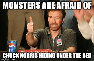 notice the tags | MONSTERS ARE AFRAID OF CHUCK NORRIS HIDING UNDER THE BED | image tagged in memes,chuck norris approves,hillary clinton | made w/ Imgflip meme maker