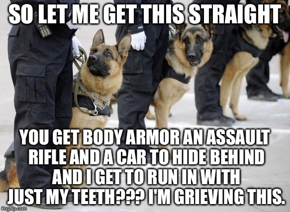 #CANINELIVESMATTER | SO LET ME GET THIS STRAIGHT YOU GET BODY ARMOR AN ASSAULT RIFLE AND A CAR TO HIDE BEHIND AND I GET TO RUN IN WITH JUST MY TEETH??? I'M GRIEV | image tagged in police dogs,memes,funny,animals,state of the union,policeporn | made w/ Imgflip meme maker