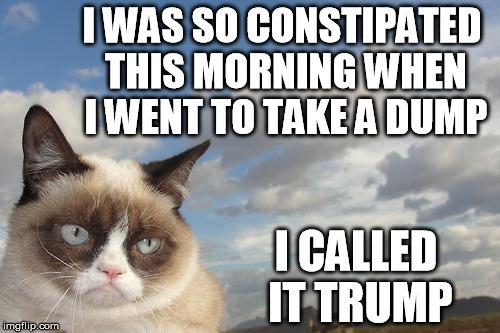 Trump Dump Imgflip