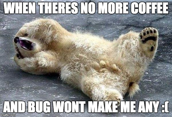 Oh Nooo Polar Bear Meme Generator Imgflip