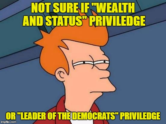 "Futurama Fry Meme | NOT SURE IF ""WEALTH AND STATUS"" PRIVILEDGE OR ""LEADER OF THE DEMOCRATS"" PRIVILEDGE 