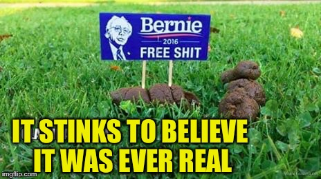 Not feelin the Bern | IT STINKS TO BELIEVE IT WAS EVER REAL | image tagged in not feelin the bern | made w/ Imgflip meme maker