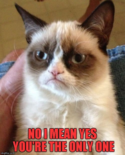 Grumpy Cat Meme | NO I MEAN YES YOU'RE THE ONLY ONE | image tagged in memes,grumpy cat | made w/ Imgflip meme maker