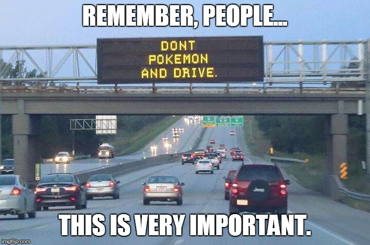 Don't play Pokemon Go While driving... Seriously, don't. |  REMEMBER, PEOPLE... THIS IS VERY IMPORTANT. | image tagged in memes,funny memes,pokemon,pokemon go,nintendo,driving | made w/ Imgflip meme maker