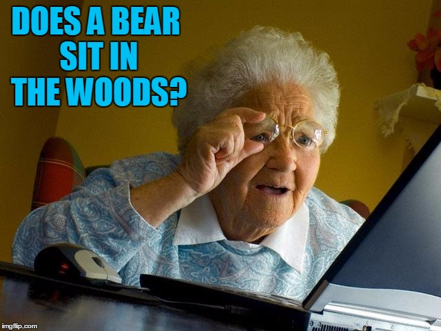 Grandma Finds The Internet Meme | DOES A BEAR SIT IN THE WOODS? | image tagged in memes,grandma finds the internet | made w/ Imgflip meme maker