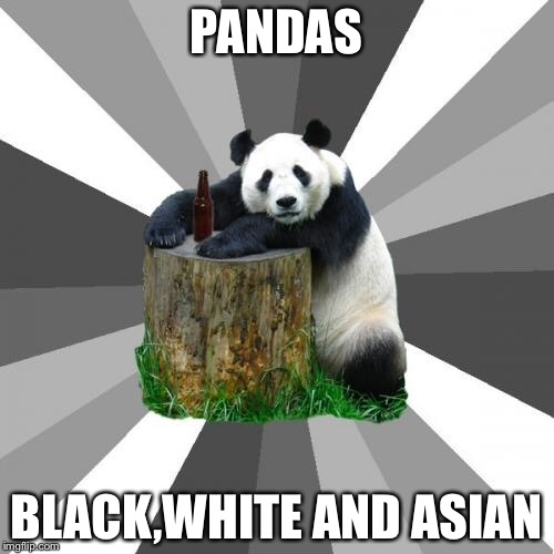 Pickup Line Panda |  PANDAS; BLACK,WHITE AND ASIAN | image tagged in memes,pickup line panda | made w/ Imgflip meme maker