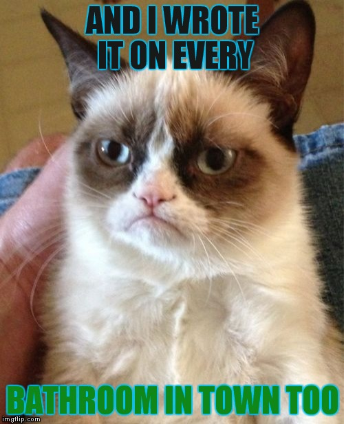 Grumpy Cat Meme | AND I WROTE IT ON EVERY BATHROOM IN TOWN TOO | image tagged in memes,grumpy cat | made w/ Imgflip meme maker