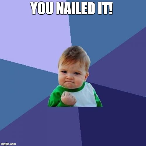 Success Kid Meme | YOU NAILED IT! | image tagged in memes,success kid | made w/ Imgflip meme maker