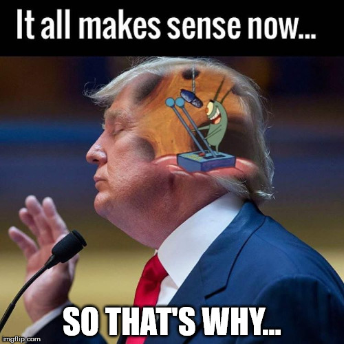 What's inside Trump's head? | SO THAT'S WHY... | image tagged in memes,funny,donald trump,inside,spongebob squarepants | made w/ Imgflip meme maker
