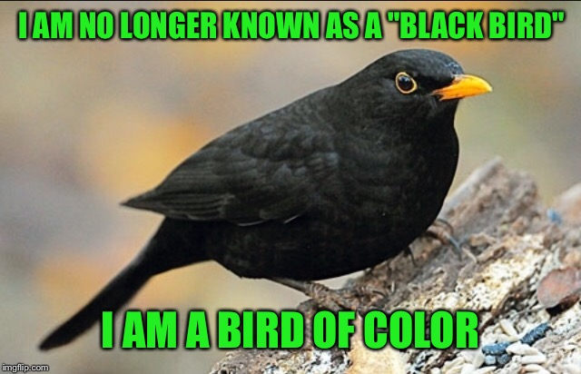 "I AM NO LONGER KNOWN AS A ""BLACK BIRD"" I AM A BIRD OF COLOR 