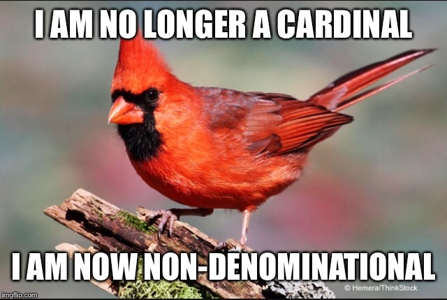 I AM NO LONGER A CARDINAL I AM NOW NON-DENOMINATIONAL | made w/ Imgflip meme maker