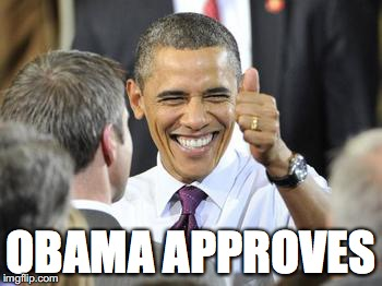 Obama's Approval | OBAMA APPROVES | image tagged in memes,barack obama,approves,true,president,usa | made w/ Imgflip meme maker