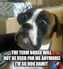 THE TERM BOXER WILL NOT BE USED FOR ME ANYMORE! I'M SO DOG DAMIT | made w/ Imgflip meme maker