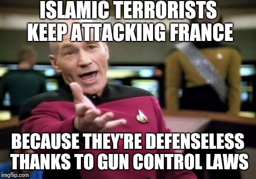 The people in France are like fish in a barrel because of gun control laws | ISLAMIC TERRORISTS KEEP ATTACKING FRANCE BECAUSE THEY'RE DEFENSELESS THANKS TO GUN CONTROL LAWS | image tagged in memes,picard wtf | made w/ Imgflip meme maker