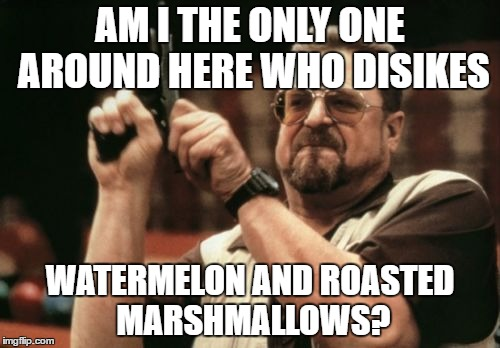 I suck at summer  | AM I THE ONLY ONE AROUND HERE WHO DISIKES WATERMELON AND ROASTED MARSHMALLOWS? | image tagged in memes,am i the only one around here | made w/ Imgflip meme maker