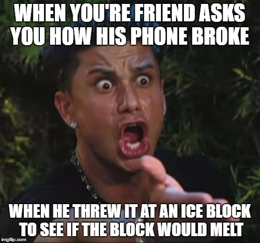 DJ Pauly D Meme | WHEN YOU'RE FRIEND ASKS YOU HOW HIS PHONE BROKE WHEN HE THREW IT AT AN ICE BLOCK TO SEE IF THE BLOCK WOULD MELT | image tagged in memes,dj pauly d | made w/ Imgflip meme maker