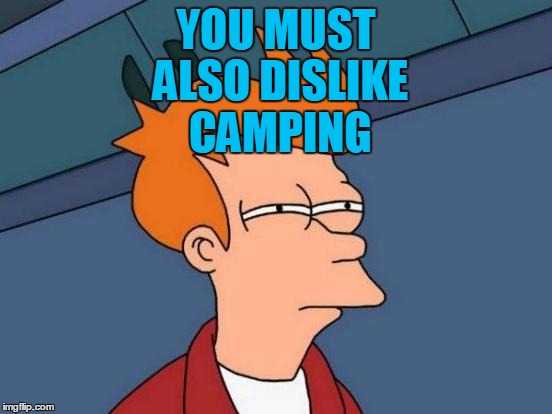 Futurama Fry Meme | YOU MUST ALSO DISLIKE CAMPING | image tagged in memes,futurama fry | made w/ Imgflip meme maker
