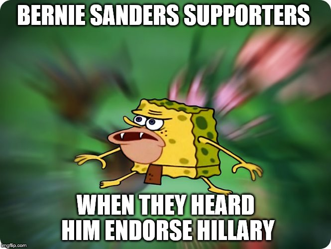 BERNIE SANDERS SUPPORTERS WHEN THEY HEARD HIM ENDORSE HILLARY | image ...