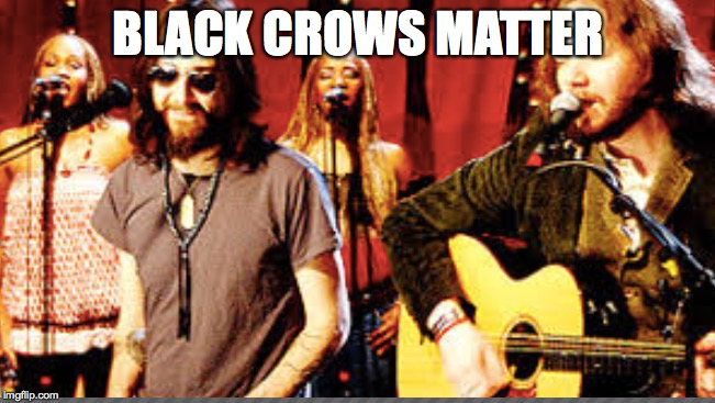 BLACK CROWS MATTER | image tagged in black lives matter | made w/ Imgflip meme maker
