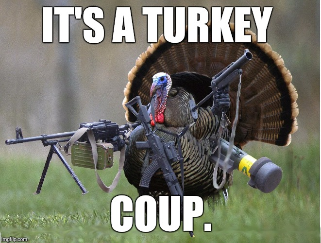 Coup D'é·turk | IT'S A TURKEY COUP. | image tagged in turkey,coup,funny,military,military humor,meme | made w/ Imgflip meme maker