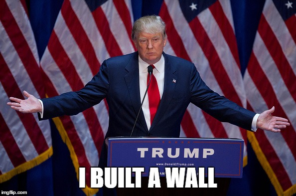 Trump Bruh | I BUILT A WALL | image tagged in trump bruh | made w/ Imgflip meme maker