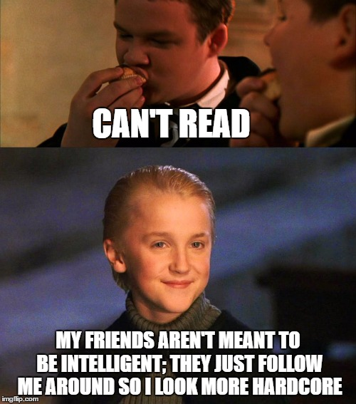 Malfoy's friend choices are questionable... |  CAN'T READ; MY FRIENDS AREN'T MEANT TO BE INTELLIGENT; THEY JUST FOLLOW ME AROUND SO I LOOK MORE HARDCORE | image tagged in draco malfoy,harry potter,dumb,special kind of stupid | made w/ Imgflip meme maker