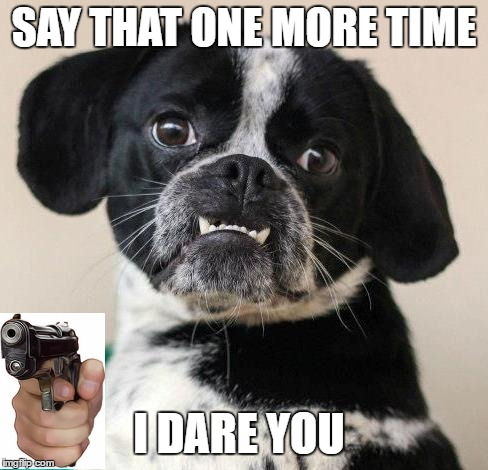 SAY THAT ONE MORE TIME I DARE YOU | made w/ Imgflip meme maker