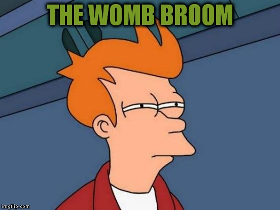 Futurama Fry Meme | THE WOMB BROOM | image tagged in memes,futurama fry | made w/ Imgflip meme maker