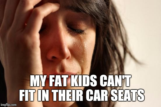 First World Problems Meme | MY FAT KIDS CAN'T FIT IN THEIR CAR SEATS | image tagged in memes,first world problems | made w/ Imgflip meme maker
