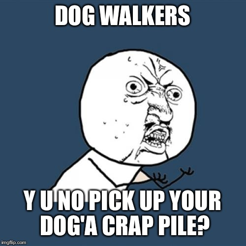 People with kids do it... | DOG WALKERS Y U NO PICK UP YOUR DOG'A CRAP PILE? | image tagged in memes,y u no | made w/ Imgflip meme maker