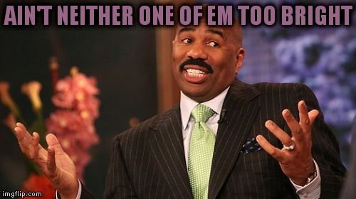 Steve Harvey Meme | AIN'T NEITHER ONE OF EM TOO BRIGHT | image tagged in memes,steve harvey | made w/ Imgflip meme maker