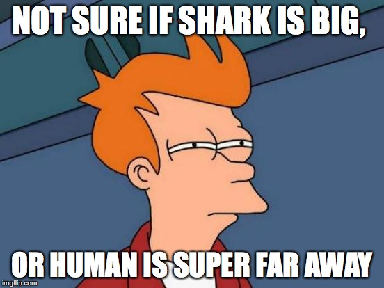 Futurama Fry Meme | NOT SURE IF SHARK IS BIG, OR HUMAN IS SUPER FAR AWAY | image tagged in memes,futurama fry | made w/ Imgflip meme maker