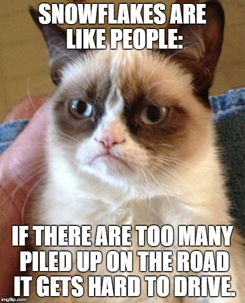 It Speaks For Itself. |  SNOWFLAKES ARE LIKE PEOPLE:; IF THERE ARE TOO MANY PILED UP ON THE ROAD IT GETS HARD TO DRIVE. | image tagged in memes,grumpy cat,murder,snow,snowflake,dead bodies | made w/ Imgflip meme maker