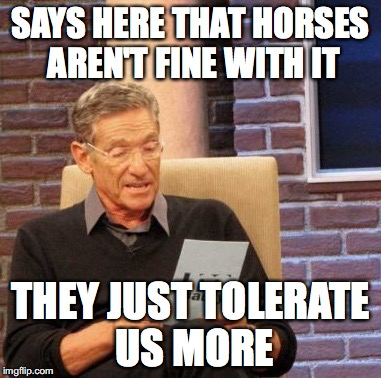 Maury Lie Detector Meme | SAYS HERE THAT HORSES AREN'T FINE WITH IT THEY JUST TOLERATE US MORE | image tagged in memes,maury lie detector | made w/ Imgflip meme maker