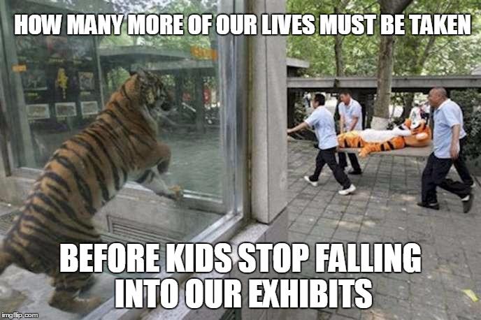 Funny Zoo Memes : Zoo imgflip