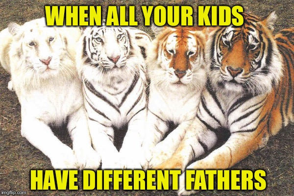 WHEN ALL YOUR KIDS HAVE DIFFERENT FATHERS | made w/ Imgflip meme maker