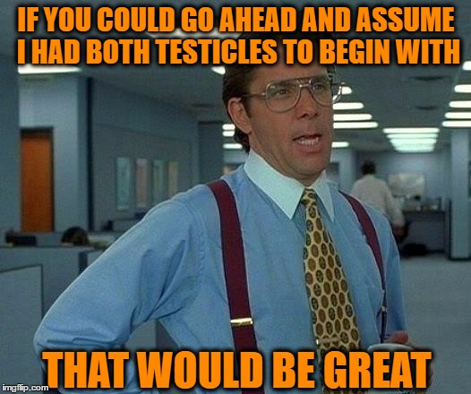 That Would Be Great Meme | IF YOU COULD GO AHEAD AND ASSUME I HAD BOTH TESTICLES TO BEGIN WITH THAT WOULD BE GREAT | image tagged in memes,that would be great | made w/ Imgflip meme maker