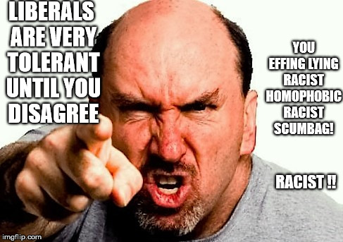 Image result for angry liberals