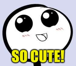 just cute | SO CUTE! | image tagged in just cute | made w/ Imgflip meme maker