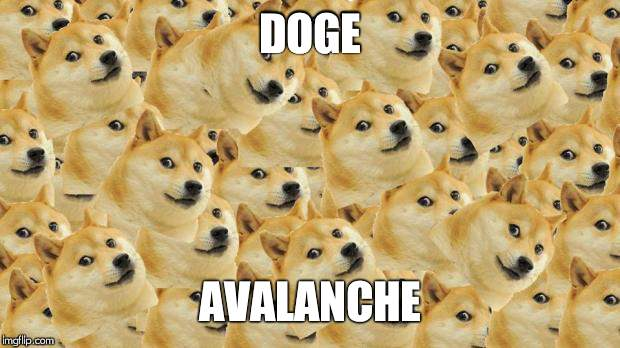 Multi Doge | DOGE AVALANCHE | image tagged in memes,multi doge | made w/ Imgflip meme maker