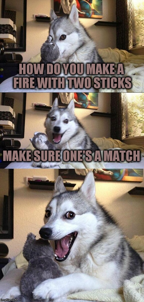 Bad Pun Dog Meme | HOW DO YOU MAKE A FIRE WITH TWO STICKS MAKE SURE ONE'S A MATCH | image tagged in memes,bad pun dog | made w/ Imgflip meme maker
