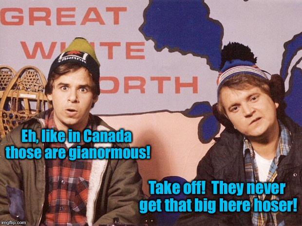 Eh, like in Canada those are gianormous! Take off!  They never get that big here hoser! | made w/ Imgflip meme maker