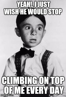 YEAH!, I JUST WISH HE WOULD STOP CLIMBING ON TOP OF ME EVERY DAY | made w/ Imgflip meme maker