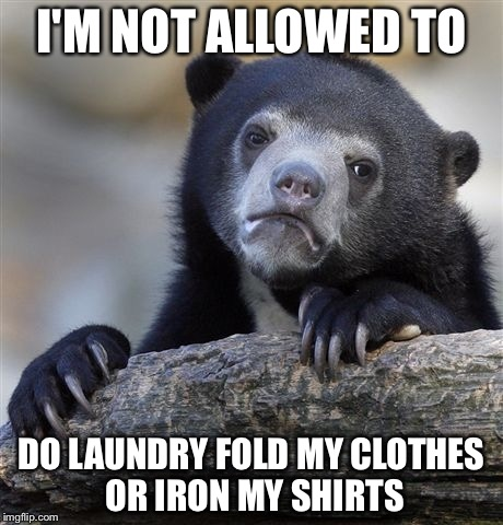 Confession Bear Meme | I'M NOT ALLOWED TO DO LAUNDRY FOLD MY CLOTHES OR IRON MY SHIRTS | image tagged in memes,confession bear | made w/ Imgflip meme maker
