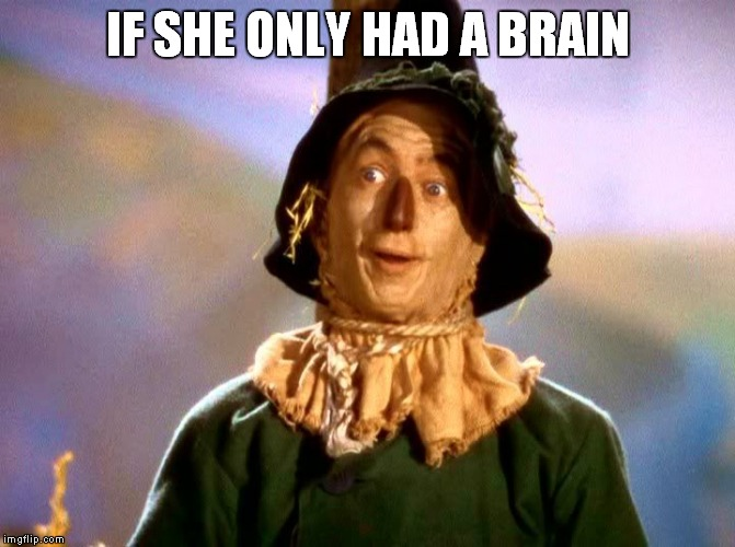 IF SHE ONLY HAD A BRAIN | made w/ Imgflip meme maker