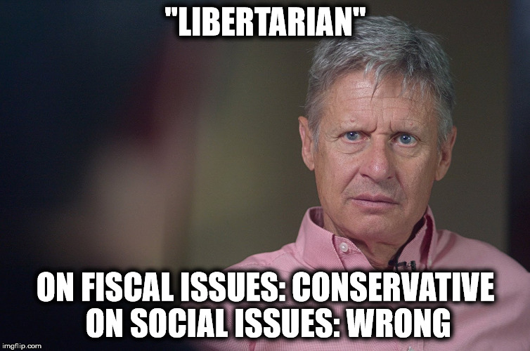 "Gary Johnson Doesn't Get It | ""LIBERTARIAN"" ON FISCAL ISSUES: CONSERVATIVE ON SOCIAL ISSUES: WRONG 