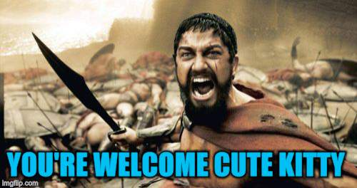 Sparta Leonidas Meme | YOU'RE WELCOME CUTE KITTY | image tagged in memes,sparta leonidas | made w/ Imgflip meme maker
